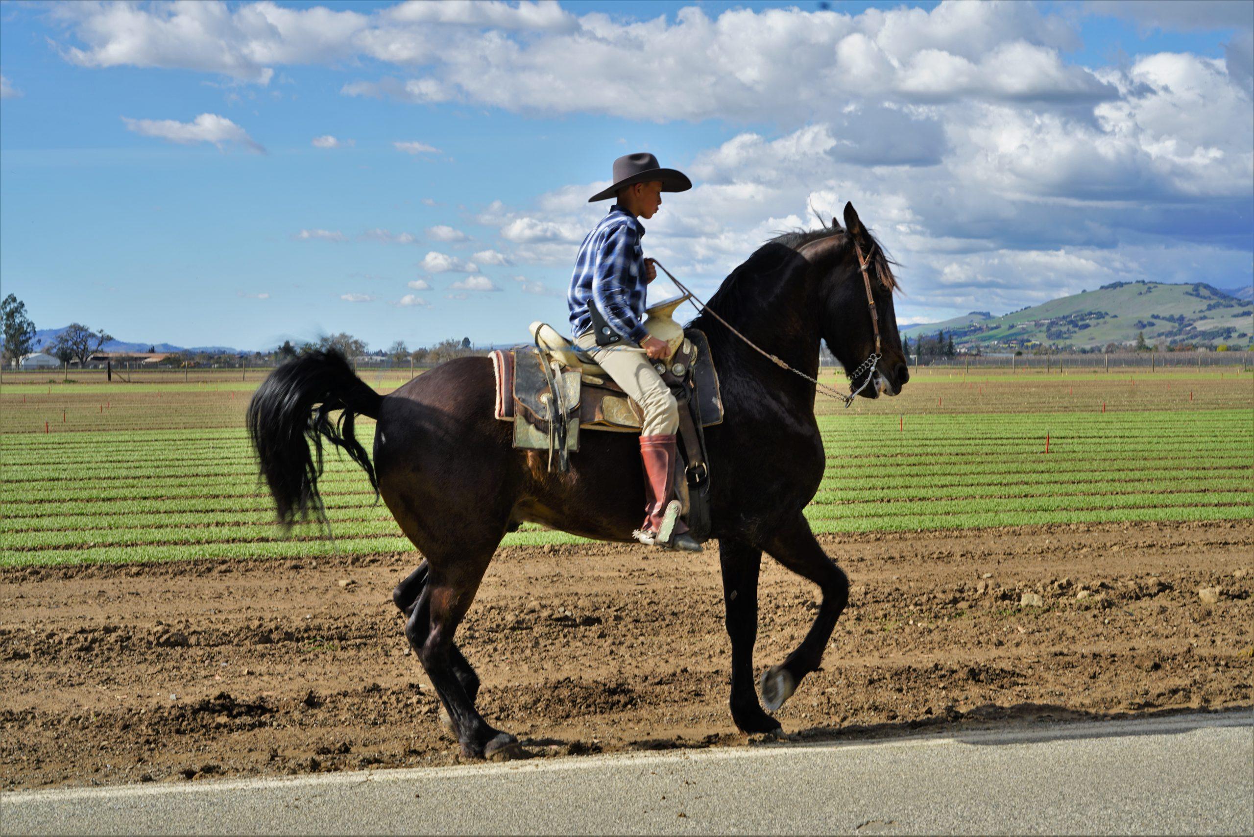 Korzyści płynące z uprawiania sportu - czyli dlaczego zdecydować się na jeździectwo?